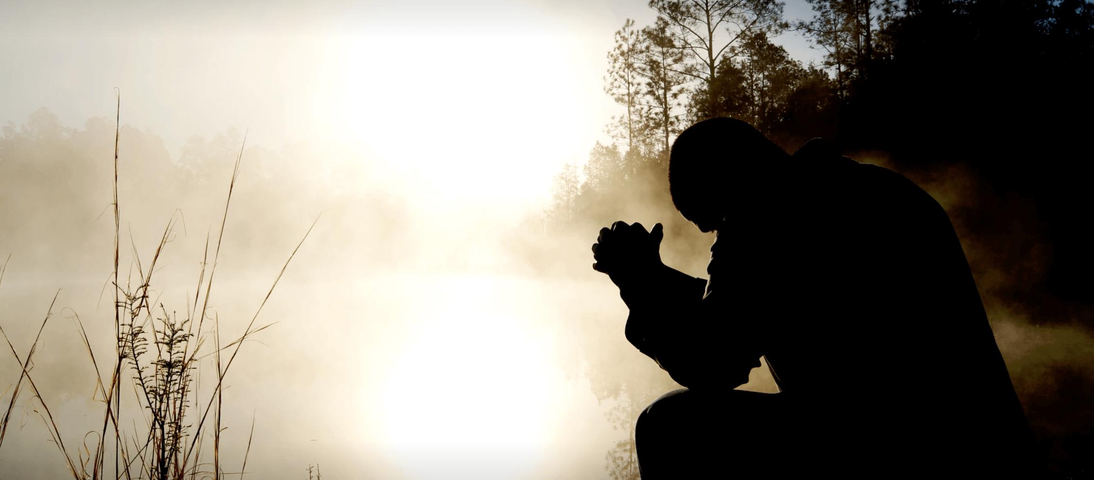 O luto e como a psicoterapia pode contribuir no processo