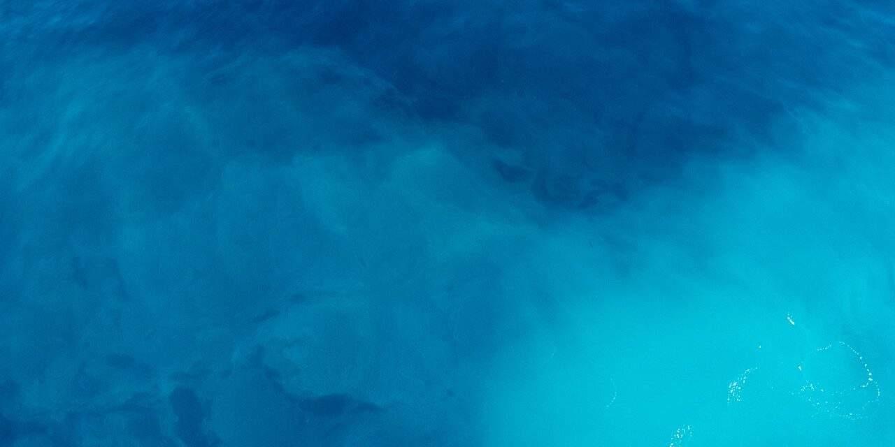 Baleia Azul: o jogo da morte. Um alerta para jovens, pais e cuidadores
