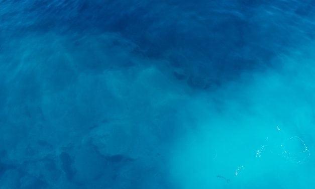 Blue Whale: o jogo da morte. Um alerta para jovens, pais e cuidadores
